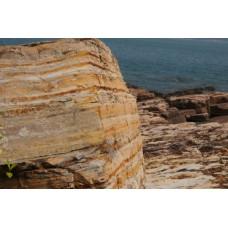 東平洲地質考察之旅